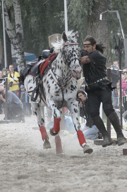 Hämeen keskiaikamarkkinat - Häme Medieval Faire 2011, Barbarian Horses, © Katja Klemola