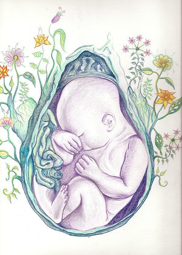 Tales of Human Creation: an illustrated guide on pregnancy and the miracles of generating life. | Crowdfunding is a democratic way to support the fundraising needs of your community. Make a contribution today!