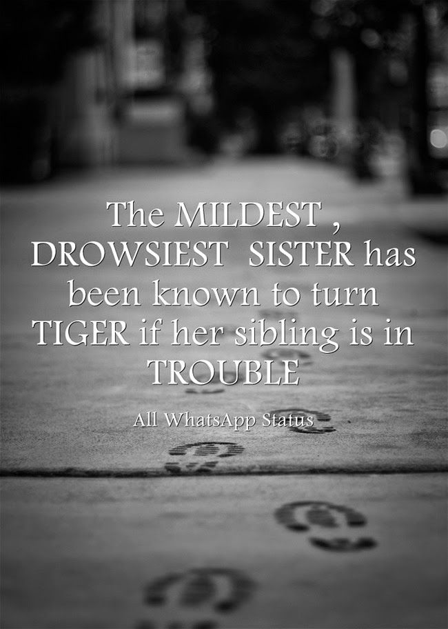 The mildest, drowsiest sister has been known to turn tiger if her sibling is in trouble.