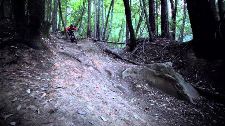 Aaron Bradford Trailfoxing Santa Cruz's Best
