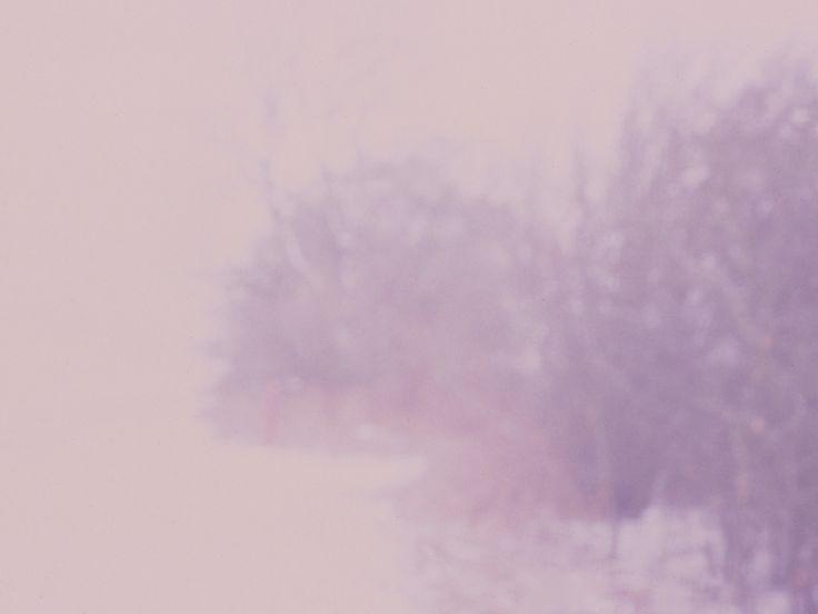 Tina Lynge - Pink landscapes