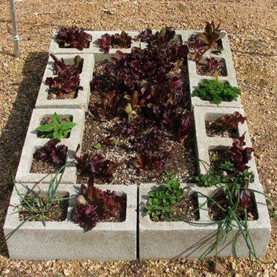 Foto: Pequena horta, utilizando blocos de cimento... Simples de ser feita, poderá ter temperos sempre fresquinhos!  Fonte: http://www.smallh...