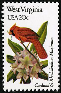 West Virginia postage stamp featuring the state bird and flower. Issued in 1982.