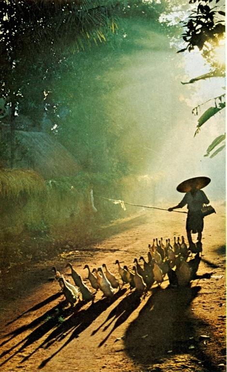 Along the upper Mekong >> Back in Time #ExpediaWanderlust