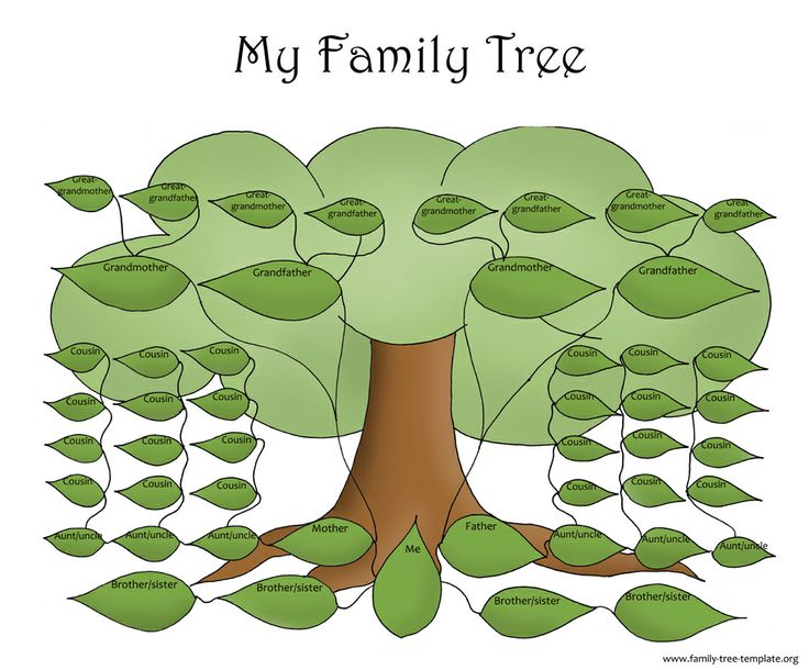 25 best Family Tree images on Pinterest Family tree chart - family tree example
