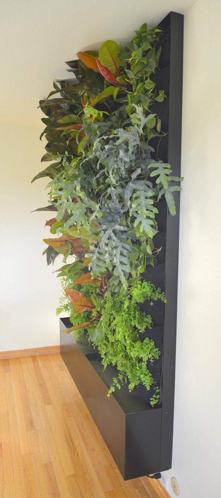 Designer Chris Bribach, Plants On Walls. Custom Recirc Living Wall.  Florafelt Vertical Garden