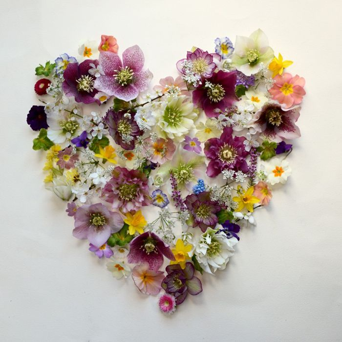 What a truly seasonal British Valentine's bouquet looks like – hellebores, daffodils, primroses, snowdrops, violets and more
