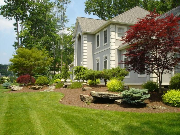 Try These Backyard Landscaping Ideas on a Budget
