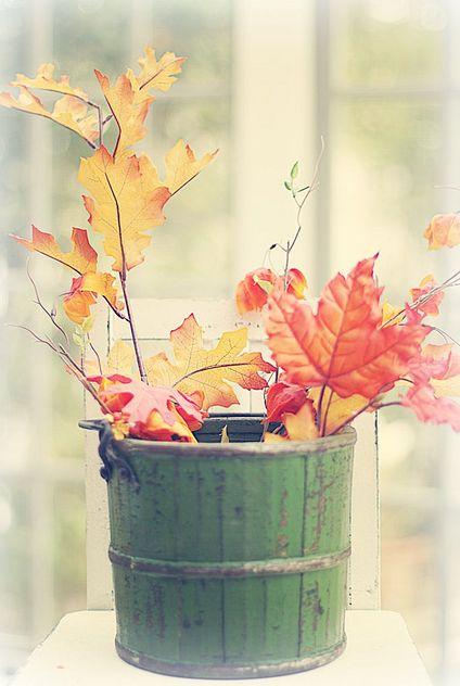 DIY inexpensive fall arrangement