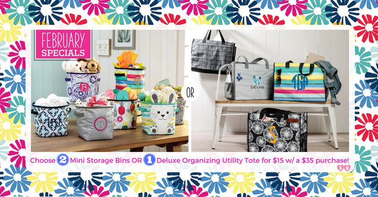 Only in February...get TWO Mini Storage Bins or ONE Deluxe Organizing Utility Tote for $15 when you spend $35!