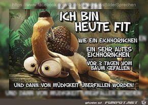 lustiges Bild 'Ich bin heute FIT.jpg' von Floh. Eine von 1014 Dateien in der Kategorie 'guten-Morgen-Bilder' auf FUNPOT.