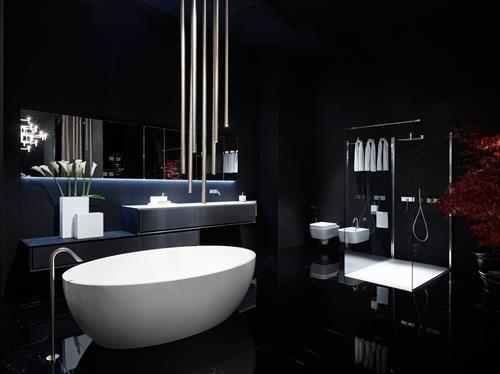 Image On Black Bathrooms Ideas