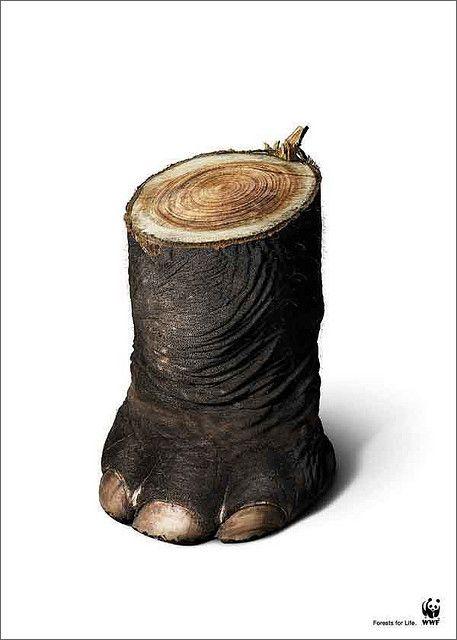 #WWF #creative #advertising