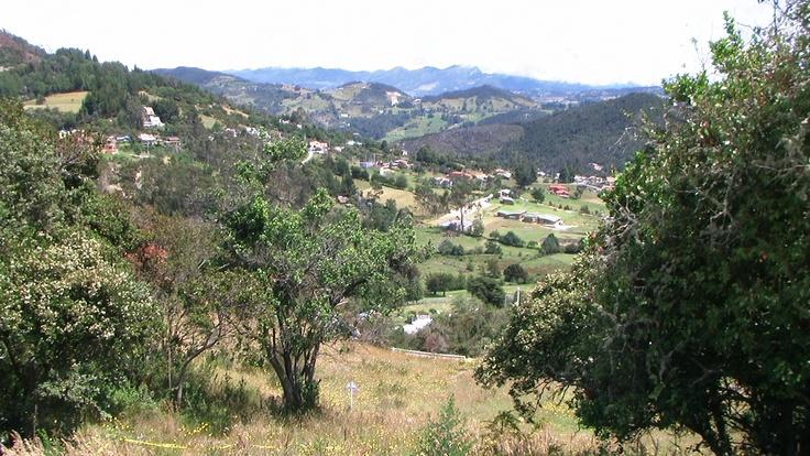 La calera ,Colombia. Condominio Bosques del Encenillo  www.bosquesdelencenillo.com
