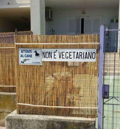 Però i vegetariani gli piacciono!