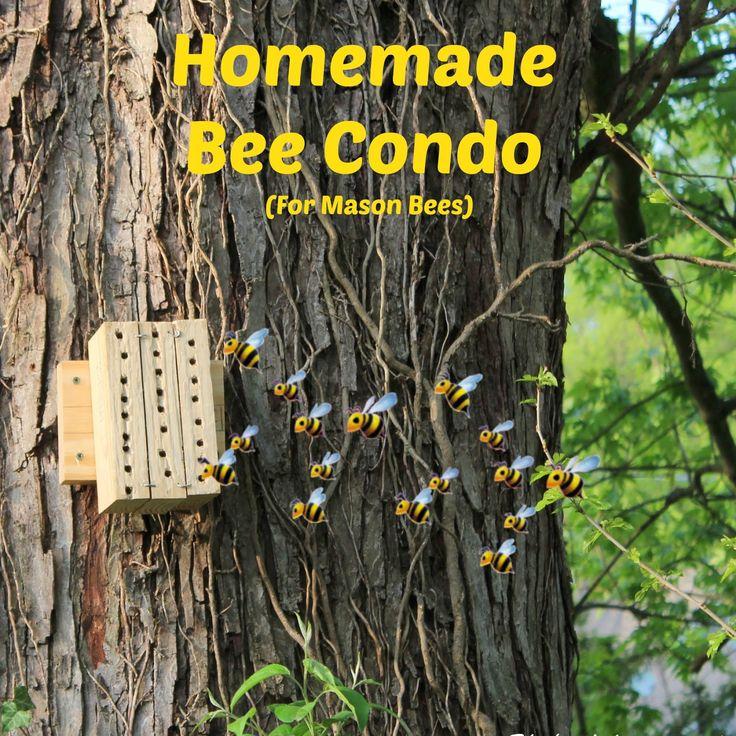 "The (mis)Adventures of a ""Born Again"" Farm Girl: Homemade Bee Condo (For Mason Bees)"