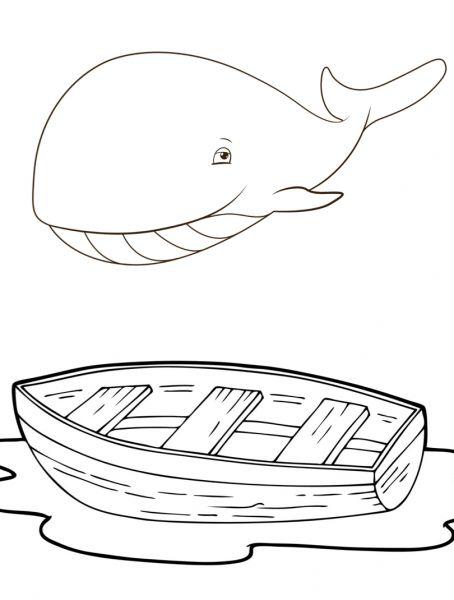 Kleuren De kleine walvis