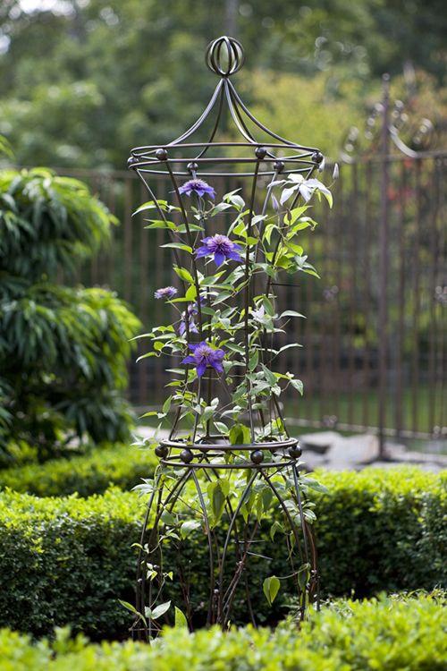 High Quality Obelisk Trellis Garden Immagini. Garden TrellisPlants For ...