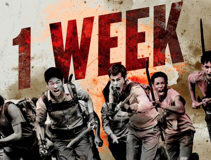 'The Maze Runner' trailer will hit the web in ONE WEEK!