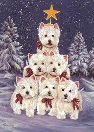 Chanel celebrates Christmas !