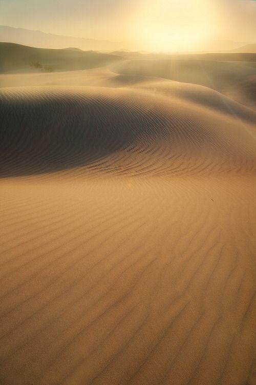 Le desert de sable.
