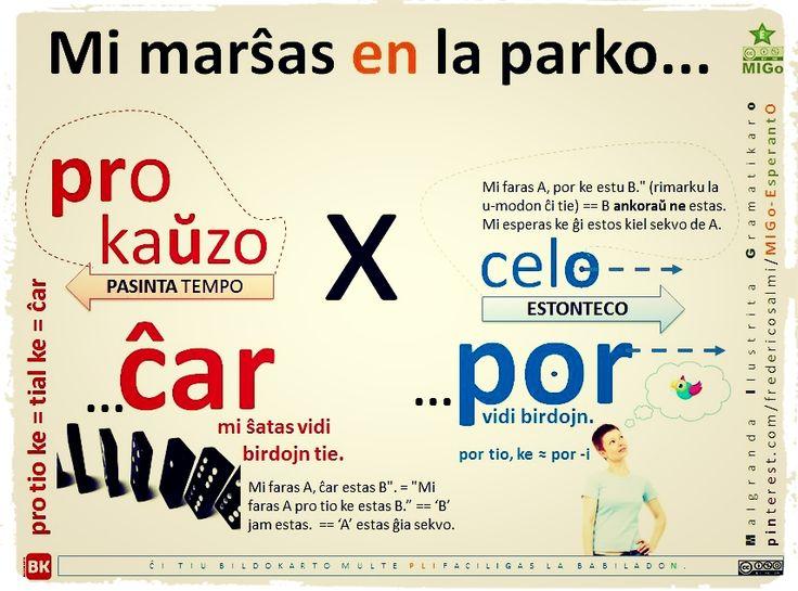 Mi ŝatas marŝi en la parko... ĉar (por i-verbo)... #migo #gramatiko #esperanto #ĉar #pro #prepozicio #akuzativo #celo #kauzo