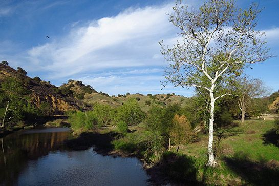 Malibu Creek State Park%0AIf your idea of zen is getting away from it all, Malibu Creek State Park in the Santa Monica Mountains is the ideal place. With 15 miles of relatively easy trails along the creek, this bucolic setting will make your road rage dissipate in no time. Be sure to bring your bathing suit — if it's hot out, you'll definitely want to take a relaxing dip in the rock pool.%0AMalibu Creek State Park, 1925 Las Virgenes Road (at Mulholland Highway); 818-880-0367.