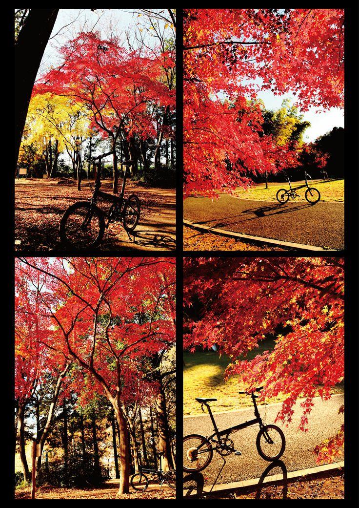 Copyright © 中村岳之 様