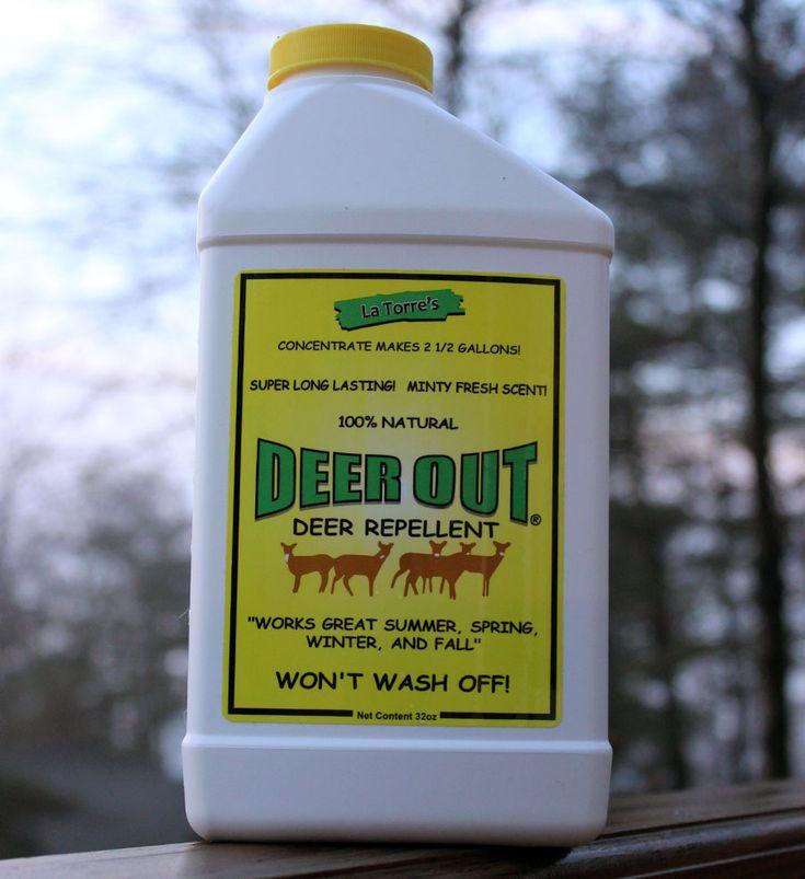 34 Best Deer Resistant Landscaping Images On Pinterest Deer Resistant Landscaping Patio And