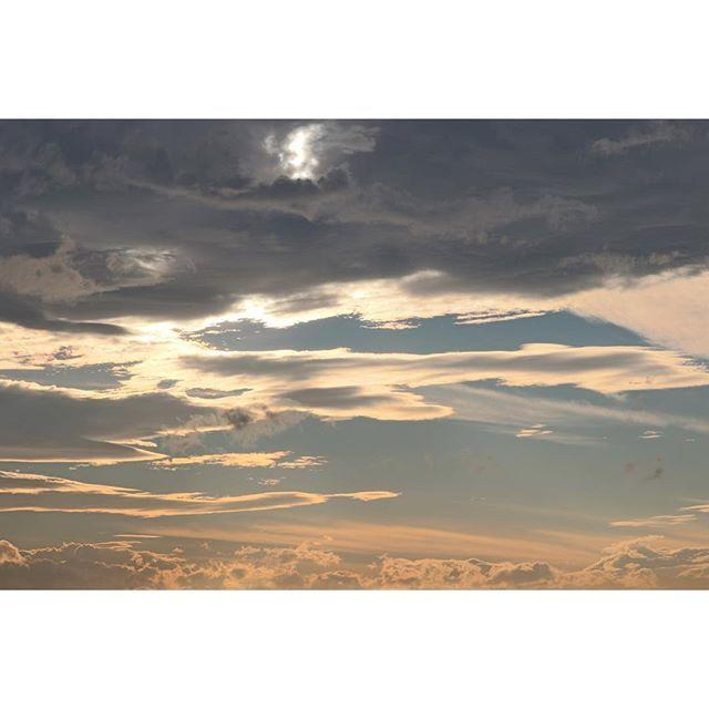 【ha_o_to】さんのInstagramをピンしています。 《days in tokyo【魔の山デ・ビ~ルマウンテン、ラスボス小林幸○との愛の頂上決戦ランデブー/最終章】 ・ ・ 今僕の目の前、60cmの距離にピョーンがいる ・ 山頂で出会い、水上駅で奇跡の再会 ・ そしてその距離が0cmになれば、僕らは2度と会うことはないだろう ・ ・ ・ 葉音「こんにちは」 ・ 驚く彼女、突然声を掛けられ困惑している ・ 葉音「あの、さ、さっ、」 ・ (さっき山でお会いしましたよね、と言おうとしている) ・ じっと僕を見つめる彼女 ・ 葉音「さ、さ・・・」 ・ ・ 葉音「さ、ささ、さささ、サメと鯨は、どちらお好きですか!!」 ・ (T△T)(T△T) ・ ・ しまった・・・な、何を言っているのだ・・・ とんでもない剛速球・・・いや魔球レベルだ・・・ ・ 言った張本人でさえ、あまりの速さについていけない ・ さかなク○じゃあるまいし、サメと鯨について、好きとか嫌いとか、そもそも誰も考えた事ないだろ ・ あぁ・・・これ完全にアウティーなやつ ・…