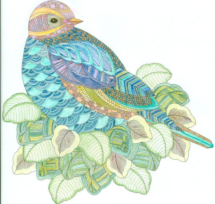 Millie Marotta Coloring Book Bird In Leaves