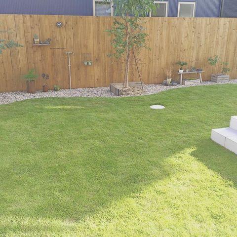 * * 芝刈り ⚐  お庭の芝がモリモリ成長して モッサモサになってきていたので 旦那が芝刈りしてくれました٩(ˊᗜˋ*)و♡ すーっきり! * #新築 #新居 #マイホーム #戸建て #家 #注文住宅 #一条工務店 #アイスマート #シンプル #シンプルインテリア #北欧 #北欧インテリア #お庭 #庭 #外構 #芝 #ウッドフェンス