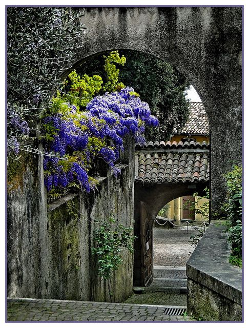 Ancient Archway, Lombardy, Italy: Lombardi Italy, Arches, Ancient Archway, Tuscany Italy, Places, Cities Gardens, Flowers, Italy Travel, Wisteria Lane