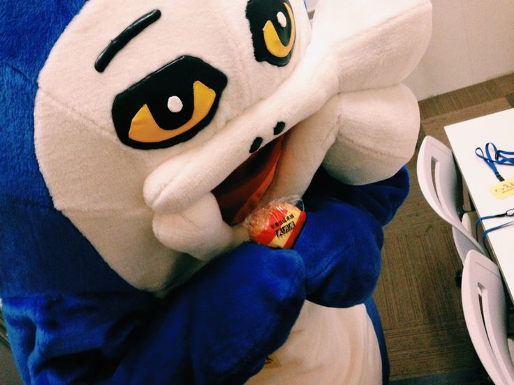"imai on Twitter: ""オフショット。楽屋で歌舞伎揚げをつまむイルカくん。 https://t.co/ZQPE2kA8Ky"""