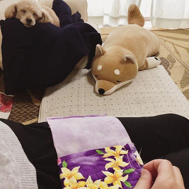 2017/8/17・ 休日らしい休日💕・ やりかけのハワイアンキルト😅の横でねむねむのマロン🐶とコタちゃん(仮名w)・ ・ 癒しのひと時💕💕・ ・ #トイプードル #toypoodle #トイプードル大好き #トイプードルブラウン #トイプー #トイプードル男の子 #愛犬 #ワンコ #わんこ #ふわもこ部 #わんこなしでは生きていけません #犬 #dog #ilovemydog #dogstagram #マロン #お昼寝マロン #ねむねむ抱き枕 #こたろう #ハワイアンキルト #ペットボトルホルダー #マロンが寝てるのは #おにーちゃんのピーコートの上 #ボタン取れたの今さらつけてるダメ嫁笑