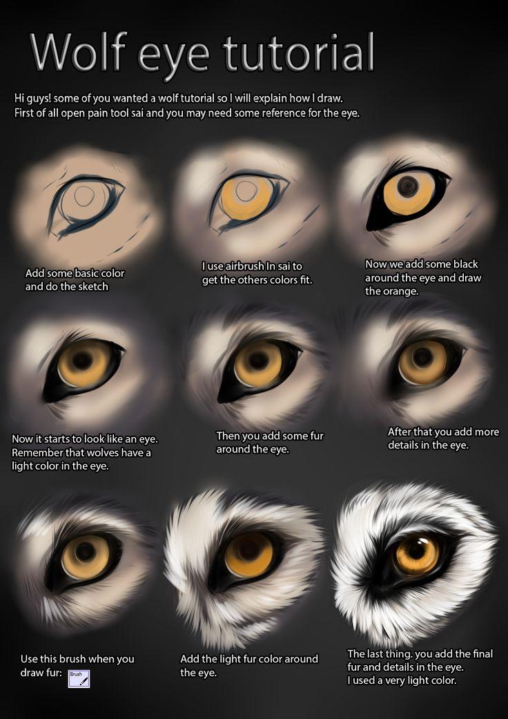 Wolf eye tutorial by TheMysticWolf.deviantart.com on ...