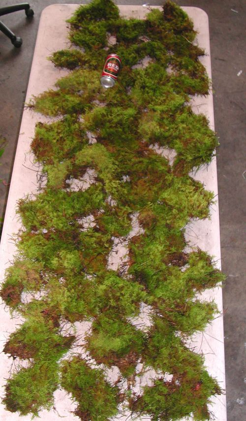 Australian Orchid Nursery - Bush moss for mounting native orchids ..2 square metres worth..1 large commercial bag