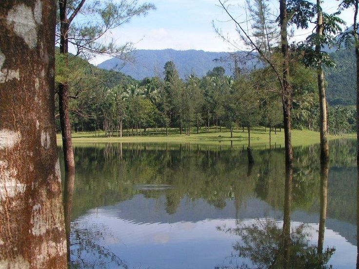 1000 Images About Amazing Places In Kerala On Pinterest Resorts Cheap Holiday Deals And Lush