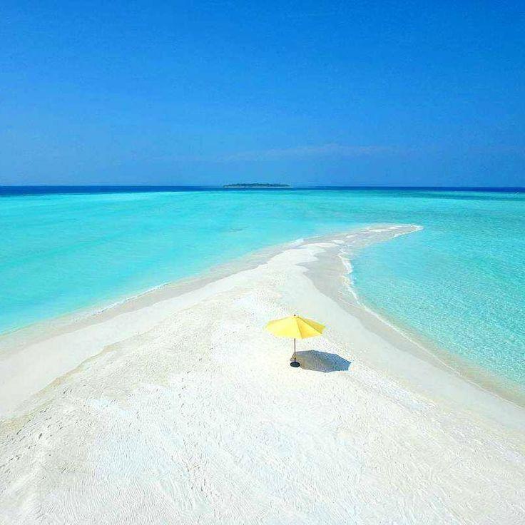The Maldives Islands  #travel #view #awesome #wonderful #beautifuldestinations #exploremore #goodvibes #travelling #beautiful #travelblog #islandlife #nature #nofilter #instagram #mytinyatlas #beauty #traveldeeper #worlderlust #lovely #walk #maldives #luxury #wonderful_places #island #beach #visualsoflife #sand  #photooftheday #paradise #finditliveit