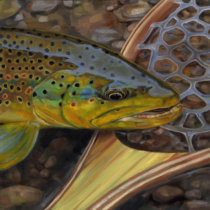 1000 images about watercolor ideas on pinterest trout for Fly fishing art