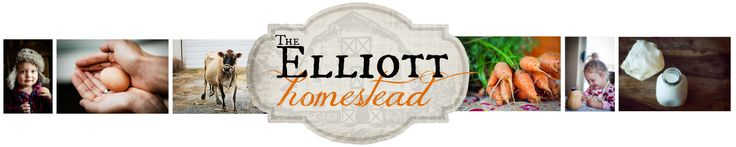 The Number One Superfood. Whether you like it, or not. | The Elliott Homestead (Cod Liver Oil)