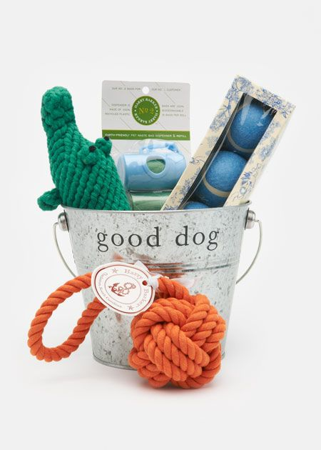 FOR THE DOG LOVER: Harry Barker Non-Toxic Recycled Steel Bucket Gift Set for Dogs with Toy Alligator | www.rodales.com