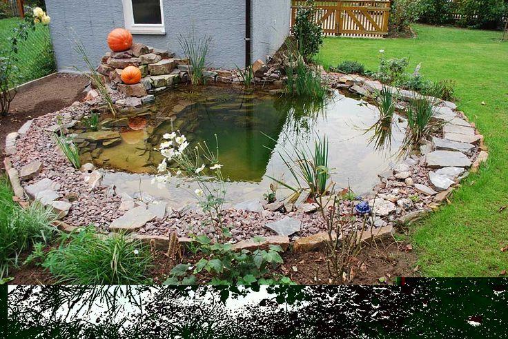 Gartenbau Teich- und Wasserspiele