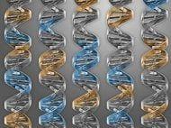 Scienze: I #danni #cerebrali di alcuni prematuri si formano già in utero (link: http://ift.tt/2j5l1Z7 )
