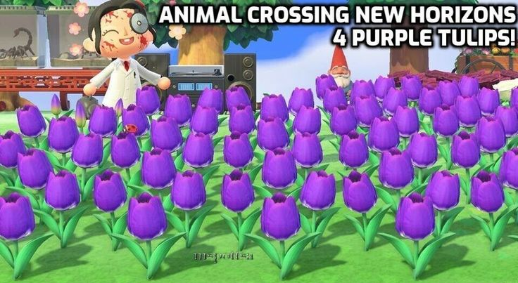 18++ Orange tulips animal crossing images