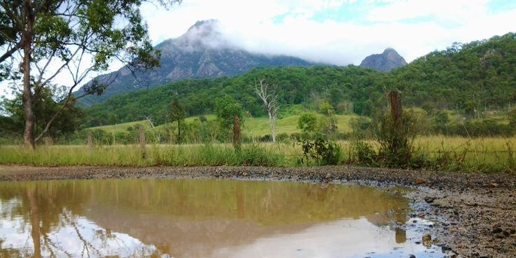 "Welcome overnight rain refreshes the creek systems and allows for a ""double mountain"" shot of Mt Barney."