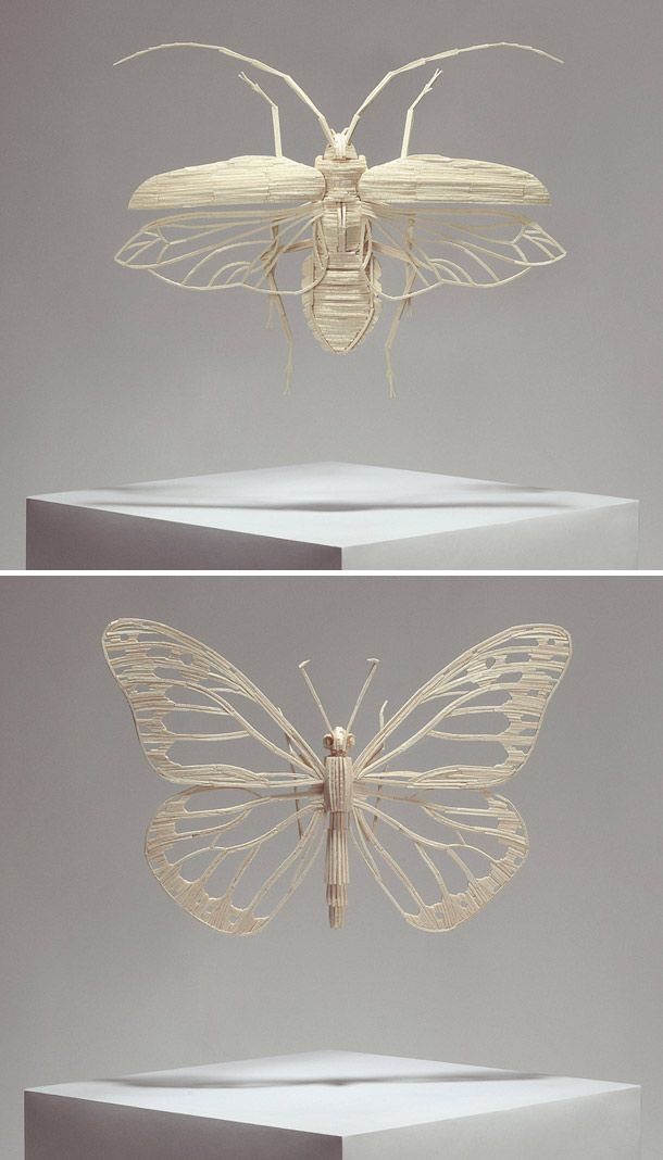Matchstick insects, Kyle Bean. | yellowtrace blog »