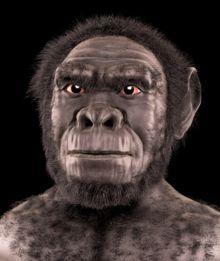 Homo habilis, reconstrucción facial forense por Cícero Moraes.- Homo habilis - Wikipedia, la enciclopedia libre