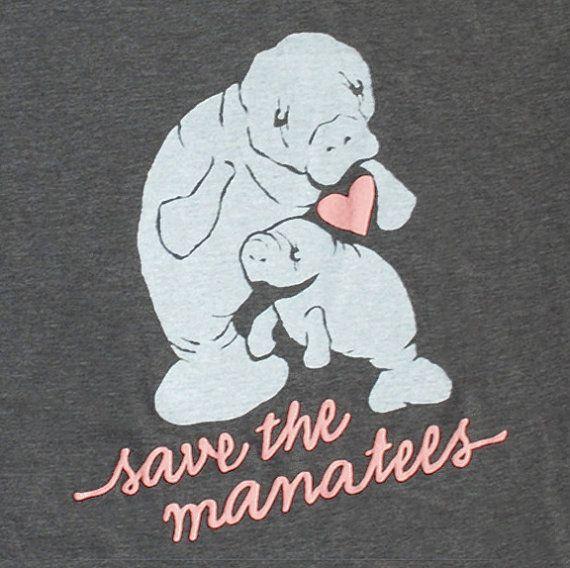 <3 Manatees!