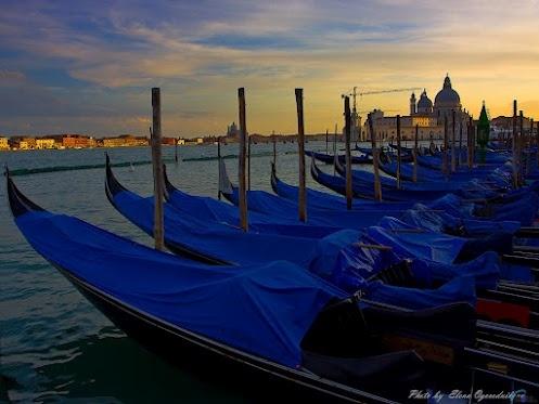 Гондолы в Венеции  фото:Елена Огородникова